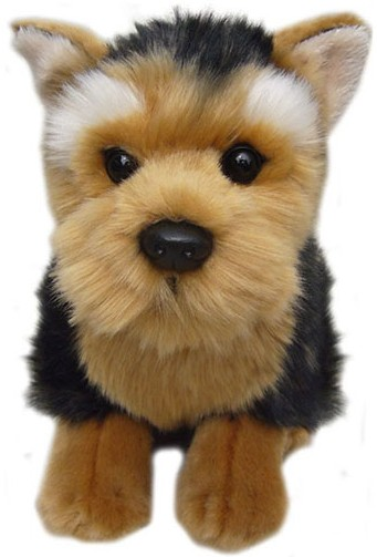 Corfe Bears Gt Faithful Friends Gt Yorkshire Terrier Soft